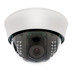 IP видеокамера купольная сетевая ERG-IPH7692С(P) - интернет-магазин КленМаркет.ру