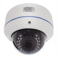 IP видеокамера купольная сетевая ERG-IPH3441(P) антивандальная