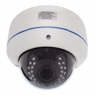 IP видеокамера купольная сетевая ERG-IPH3442(P) антивандальная